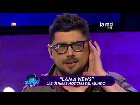 Lama News: Las noticias más raras del mundo