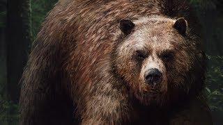 Гвинт - Бурый медведь