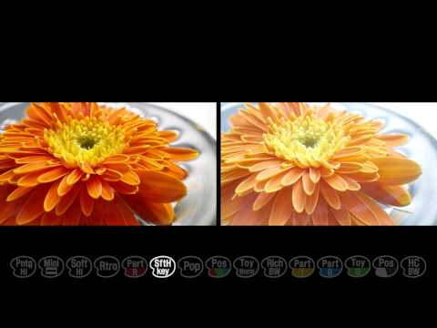 Sony NEX-3N camera - Picture Effect (HD)