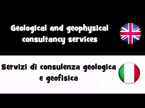 VOCABULARY IN 20 LANGUAGES = Geological and geophysical consultancy services