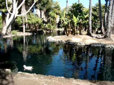 paradise-hotel-and-resort-mission-bay-san-diego-800-632-1698
