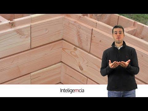 Startup constrói casas sustentáveis e duráveis de madeira