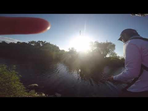 Fishing L67 Canal [Tamiami Trail]
