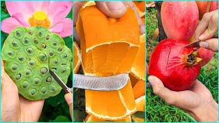 Farm Fresh Ninja Frขit Cutting P(04) 🥝🥝 Tik Tok China 🥝🥝 (Oddly Satisfying Fruit Ninja)