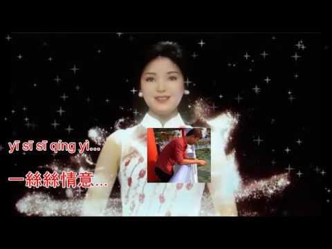Teresa Teng - Wo Zhi Zai Hu Ni - 我只在乎你 - Karaoke