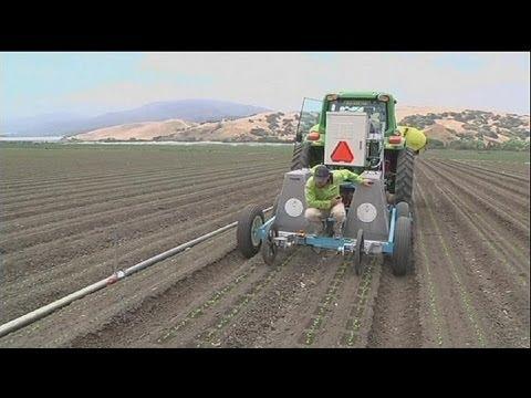 Teknolojik Robotlar Çiftçilik Yapıyor