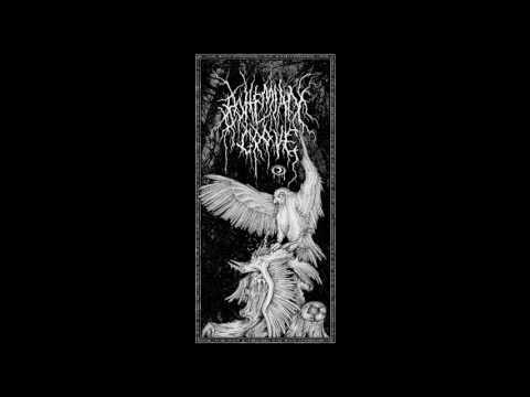 Bohemian Grove - Mead Moon of Ishtar (New Song)