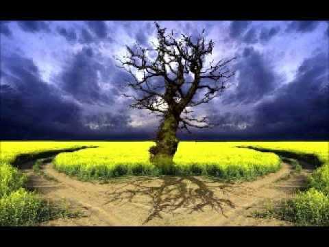 Şeyh Abdullah Yolcu - İbrahim aleyhisselamin hayati ve yıldıza, aya ve güneşe taptdimi?