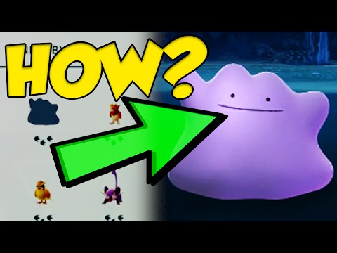 pokemon go how to catch a ditto