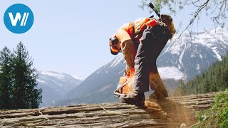 Die Holzfäller von British Columbia (360° - GEO Reportage)