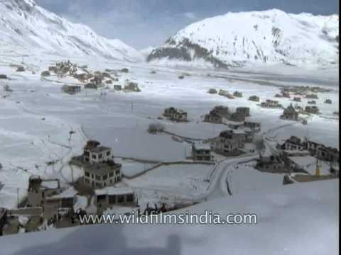 Padum town in the middle of the Zanskari winter