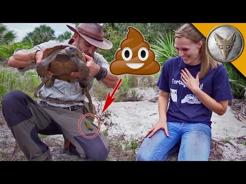 Thumbnail: Pooper Reel - Animal Show Host Gets Pooped On...A LOT!
