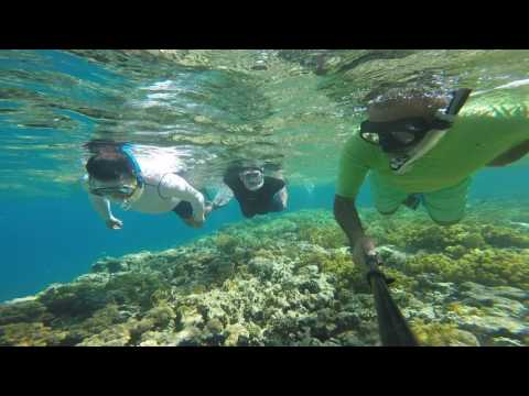 Snorkeling 2 in Aqaba with gopro.