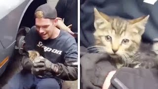 mechanic-saves-kitten-from-car-engine