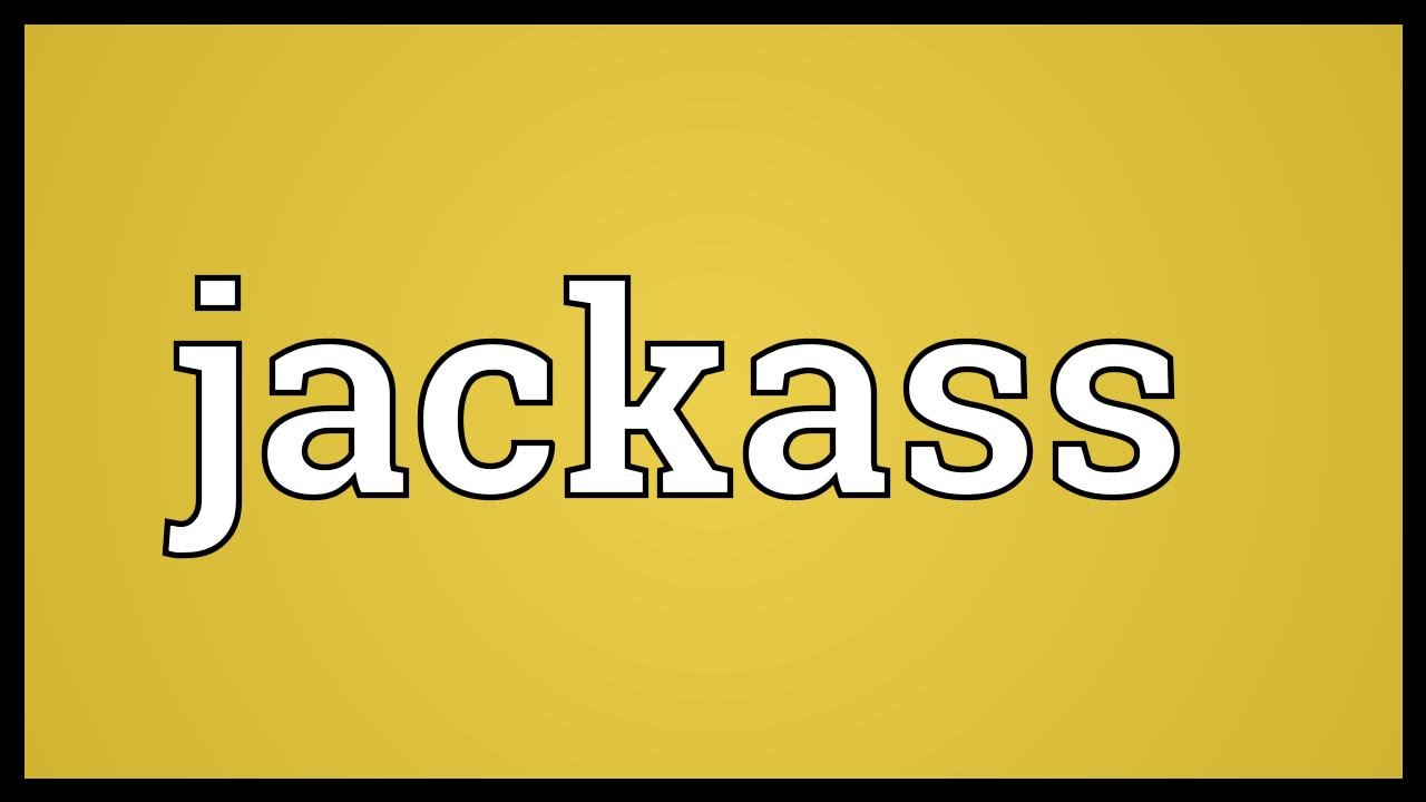 What is the meaning of jackass