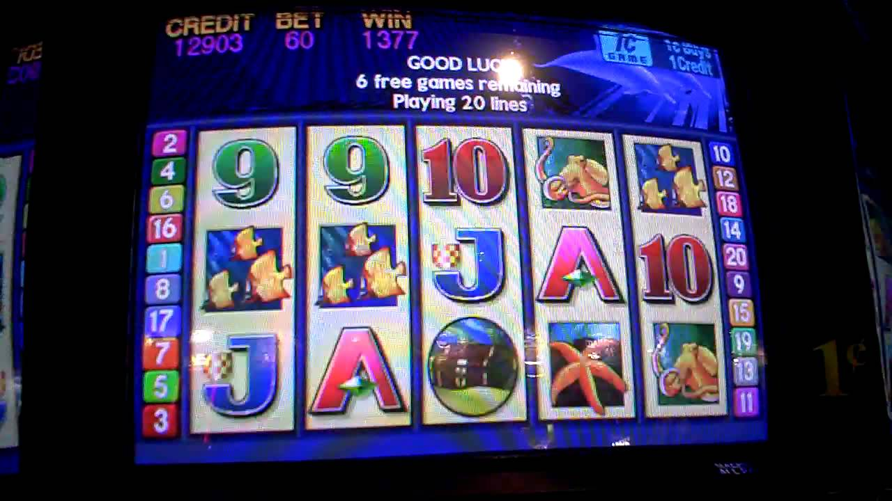 Free casino slots dolphin treasure casino in miwaukee wisconsin