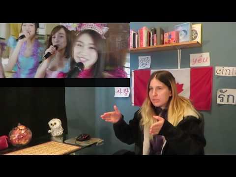 JKT48- Dirimu Melody MV Reaction