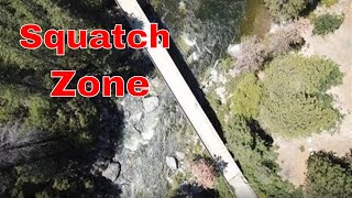 Live Chat in the Zone!! New Bigfoot Sightings!!  8/16/2019