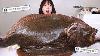 7kg 자연산 대광어 회떠서 먹방