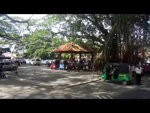 SADISHA | සදිශා Step 01| Documentry video in Galle,Galle Fort and Rumassala, Sri Lanka 4