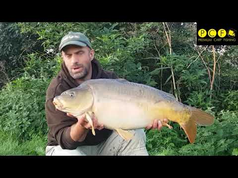 Marks carping Diary. Abbey Revisited carp fishing.
