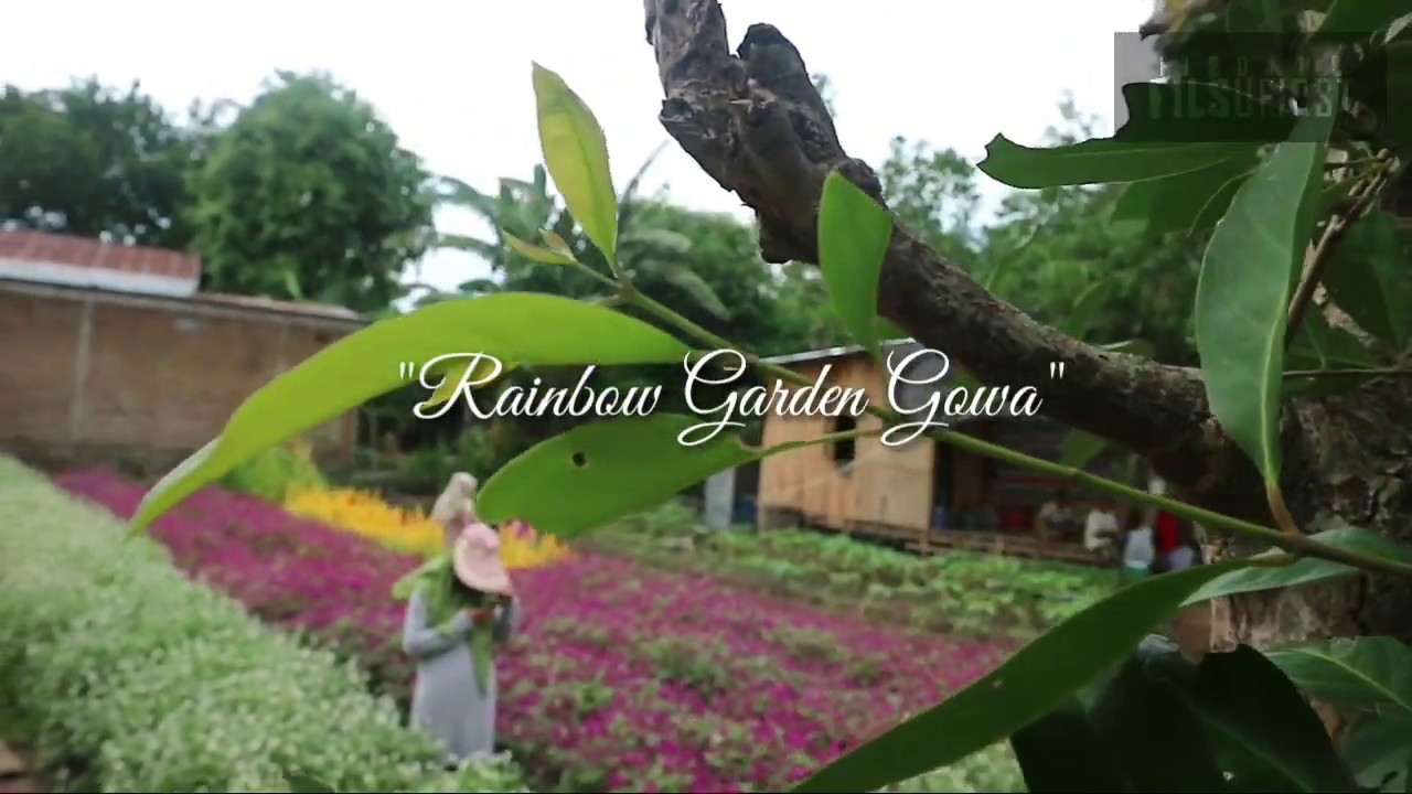 Rainbow Garden Gowa - YouTube