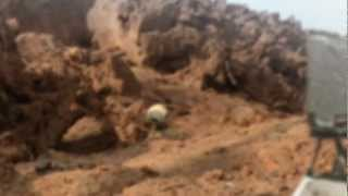 Controversial Photos proves life on Mars? NASA Leaked Footage Alien Creature Strange Artifacts!
