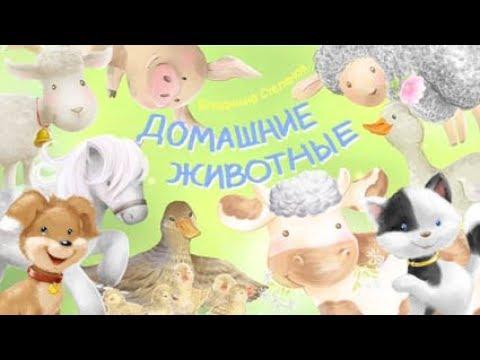 Стихи для детей. Домашние животные.