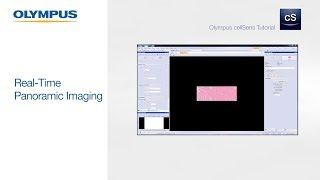 OLYMPUS cellSens Tutorial | Real-Time Panoramic Imaging