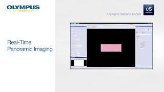 OLYMPUS cellSens Tutorial | Real-Time Panoramic Imaging