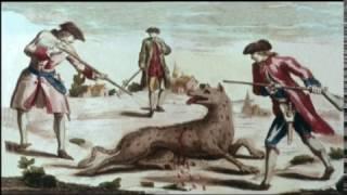 Die Bestie Von Gevaudan (Doku ZDF 2003)