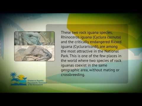 Trivia Encyclopedic Dictionary Of The Environment