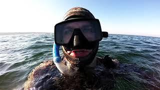 Łowiectwo podwodne w Bałtyku