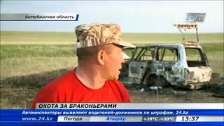 В Актюбинской области задержали браконьеров за охоту на сайгаков