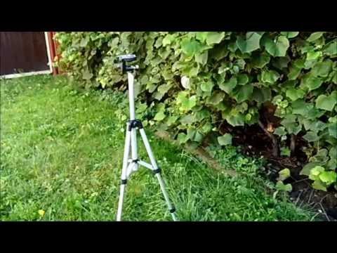 Tìm hiểu về chân máy ảnh Tripod Weifeng WT 3110A