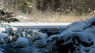 Relaxing Nature Scenes - Relaxation Meditation Soothing sounds of Water