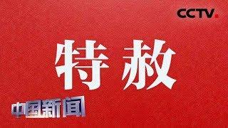 [中国新闻] 国家主席习近平签署发布特赦令 在中华人民共和国成立七十周年之际 对九类服刑罪犯实行特赦 | CCTV中文国际