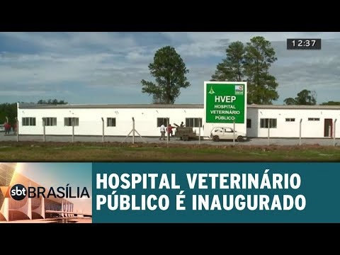 Hospital Veterinário Público é inaugurado em Brasília