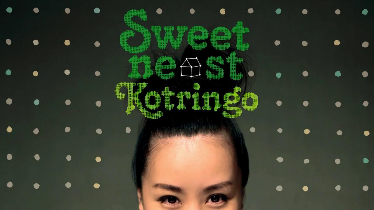 kotringo sweet nest