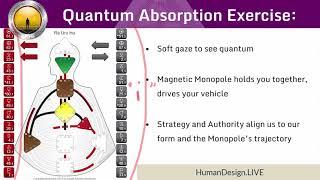 Human Design System Quantum Absorption