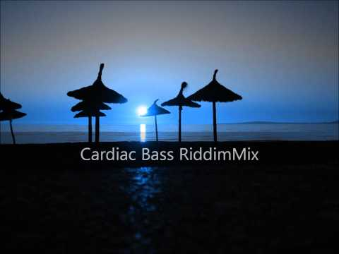 Cardiac Bass Riddim Mix 2012