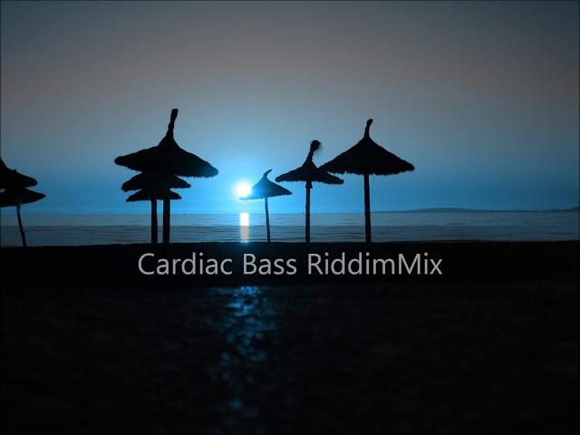 Cardiac Bass Riddim Mix 2012