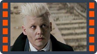 Фантастические твари и где они обитают (2016) — «Ньют раскрывает Грин-де-Вальда» сцена 7/7