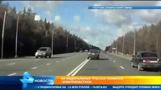 Отпугивать диких животных от дорог в Ленинградской области будут током