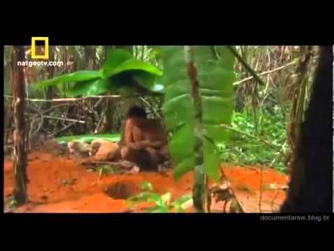 a-vida-selvagem-na-floresta-amazonica-10-min