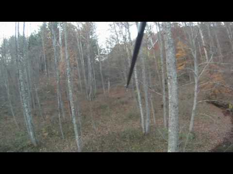 Wayne National Forest Bowhunting 2016
