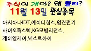 [웃지] 11월13일 관심주 - 아시아나IDT,에이디칩…