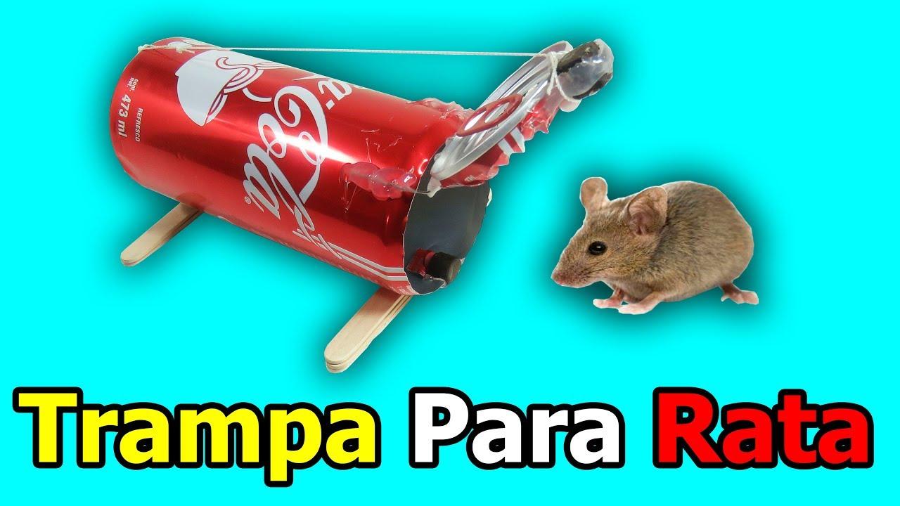 Como hacer trampa para ratas o ratones casera youtube - Trampas para cazar ratas ...