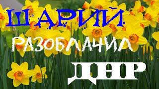 Шарий окончательно разоблачил ДНР