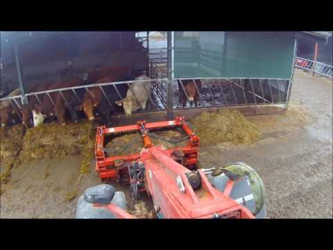 Feeding Suckler Cows 2017 - Tyrrell Farm